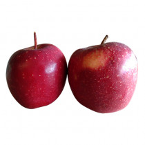 Mr Apple Imported (Newzealand) 1kg