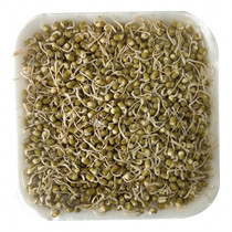 Green Sprouts (200g)